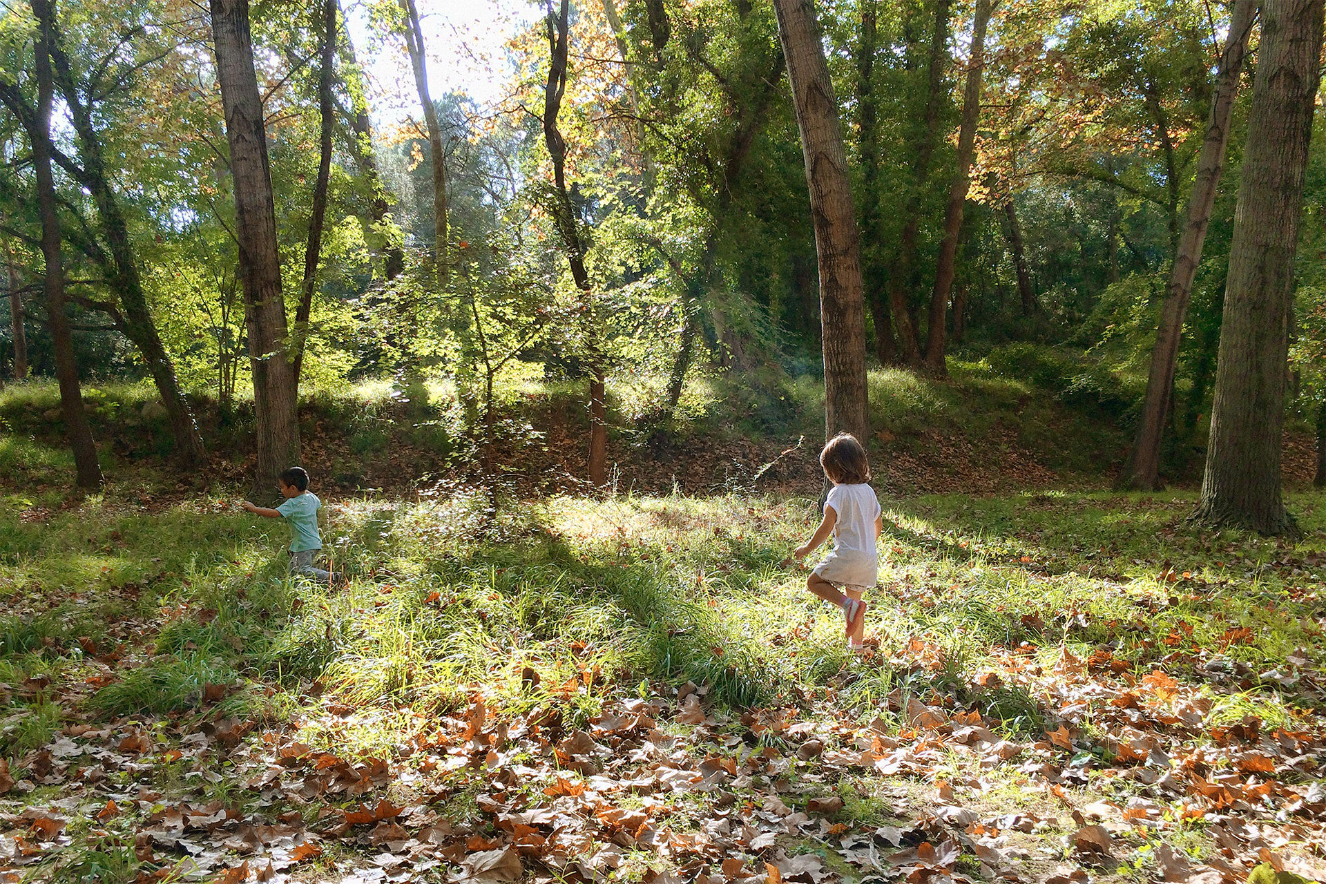 kids playing in the forest in Gualba, Montseny